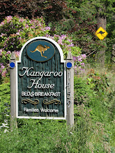 Photo: Day 6: Kangaroo House B&B sign. Look, they even have a kangaroo crossing sign! It's too bad they don't actually have any kangaroos at the B&B.