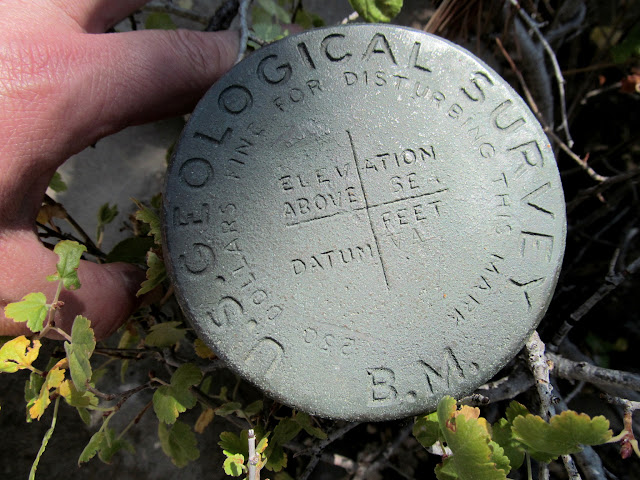 "Unusual survey marker, simply stamped ""VA"""