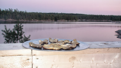 Photo: Baked Largemouth Bass Filets