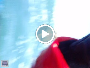 Video: Lucy doing a seal launch