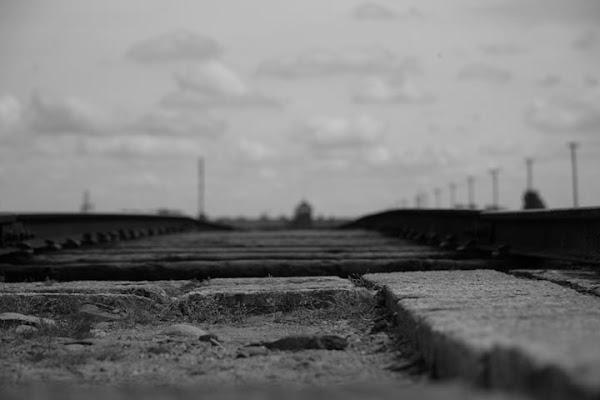 il treno passò per Auschwitz di barbaresi