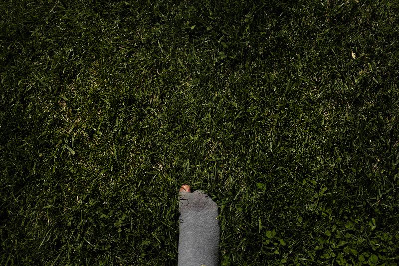 Voglia di verde  di faranfaluca