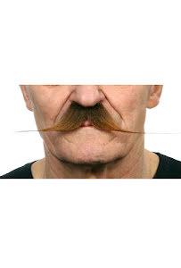 Spetsig mustasch, brun