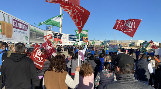 Cientos de trabajadores del manipulado se manifiestan en El Ejido