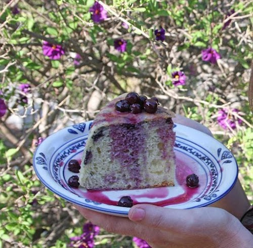 """Dutch Oven Cake with Blue Berries """"I love cooking out doors. It..."""