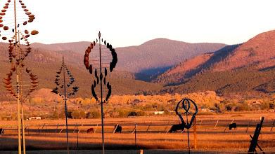 Photo: Wind art and cows, El Prado