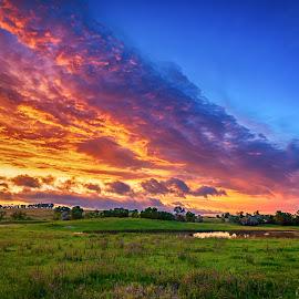 Colorful Sunset by Kendra Perry Koski - Landscapes Prairies, Meadows & Fields ( flowers, pink, green, yellow, tripp county, dakotawindsphoto.com, summer, dakota winds photography, 2018, june, winner, wildflowers, golden hour, hdr, sunset, south dakota, colome, hdr efex, blue hour, rahn dam, us )