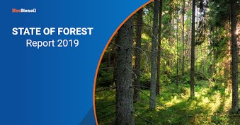 State of Forest Report 2019