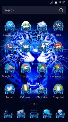 Theme for Cool Leopard - screenshot