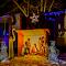 7864 jpg Christmas Feb-18-1.jpg