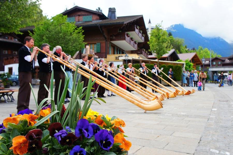Alpenhorn players by Diane Dunn - People Musicians & Entertainers ( musical instrument, switzerland, folk dress )