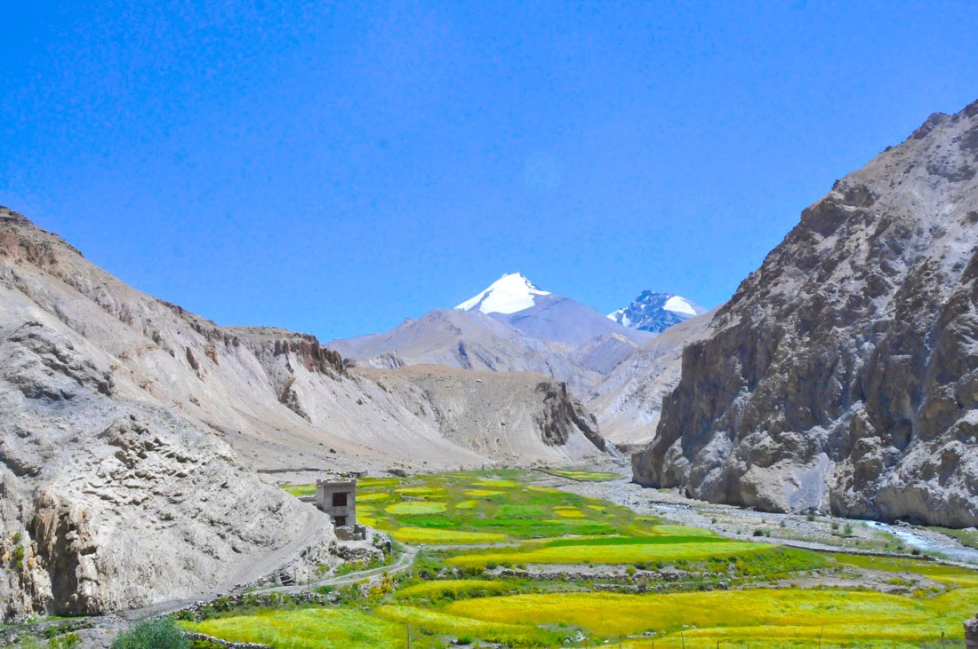 Best Trekking Asia // Kang Yaze Markha Valley Trek Ladakh India