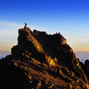 Mt. kilimanjaro sunset by Peter Christoph - Landscapes Mountains & Hills