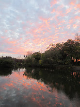 Photo: Pink flecks in the sky and in the water at Eastwood Park in Dayton, Ohio.
