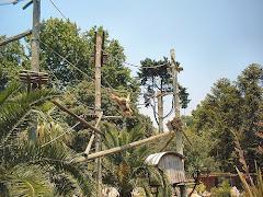 Visiter Jardin zoologique