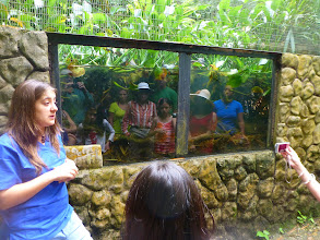 Photo: Our group reflected in an aquarium window