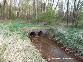 Photo: Przepust którym pod pasami przeprawia się rów Kamienny Potok