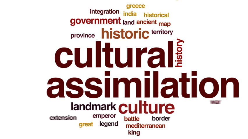 Image result for cultural assimilation