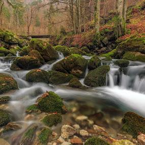 autumn creek by Bor Rojnik - Landscapes Waterscapes ( water, color, colorful, waterscape, autumn, creek, cascades, bridge, river )