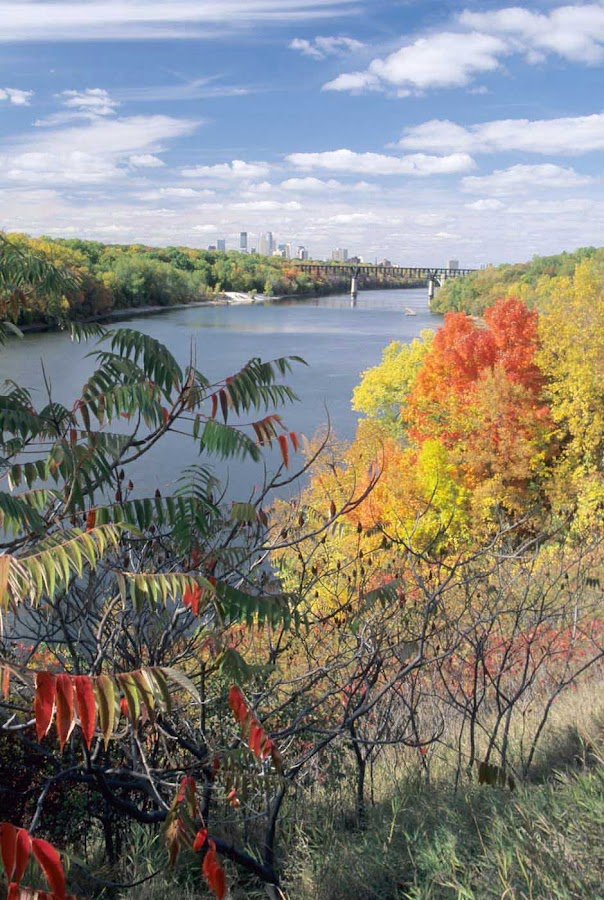 The northern Mississippi River and skyline of Minneapolis, Minn., during autumn. See it on an American Cruise Lines sailing.