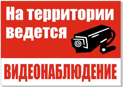 vedetsia_videonabliudenie.png