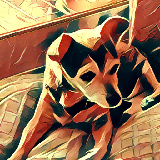 BarnaSoba Studios avatar image