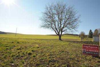 terrain à Paisy-Cosdon (10)