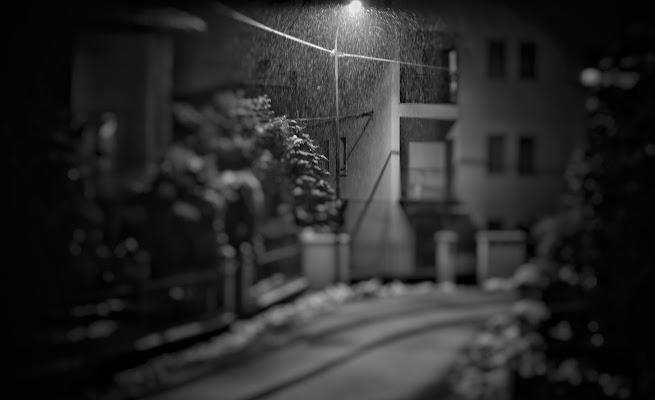 Black and White di PifferiValentina