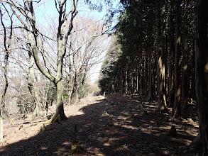 植林との境の切り開きを進む