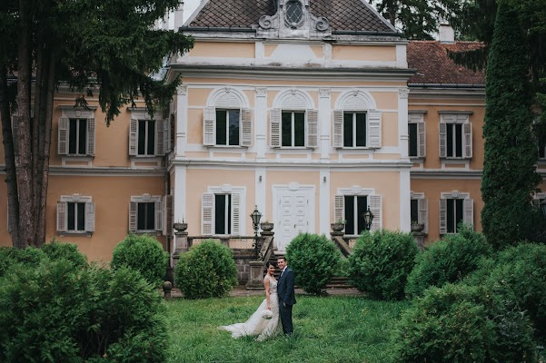 Wedding photographer Bedő Andor (bedoandor). Photo of 29.10.2017