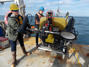 Photo: Kraken2 ROV Recovery (Image courtesy of Gulf of Maine Deep Sea Coral Science Team 2013/NURTEC-UConn/NOAA Fisheries/UMaine)