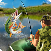 Cool Summer Fishing for Bait Simulator