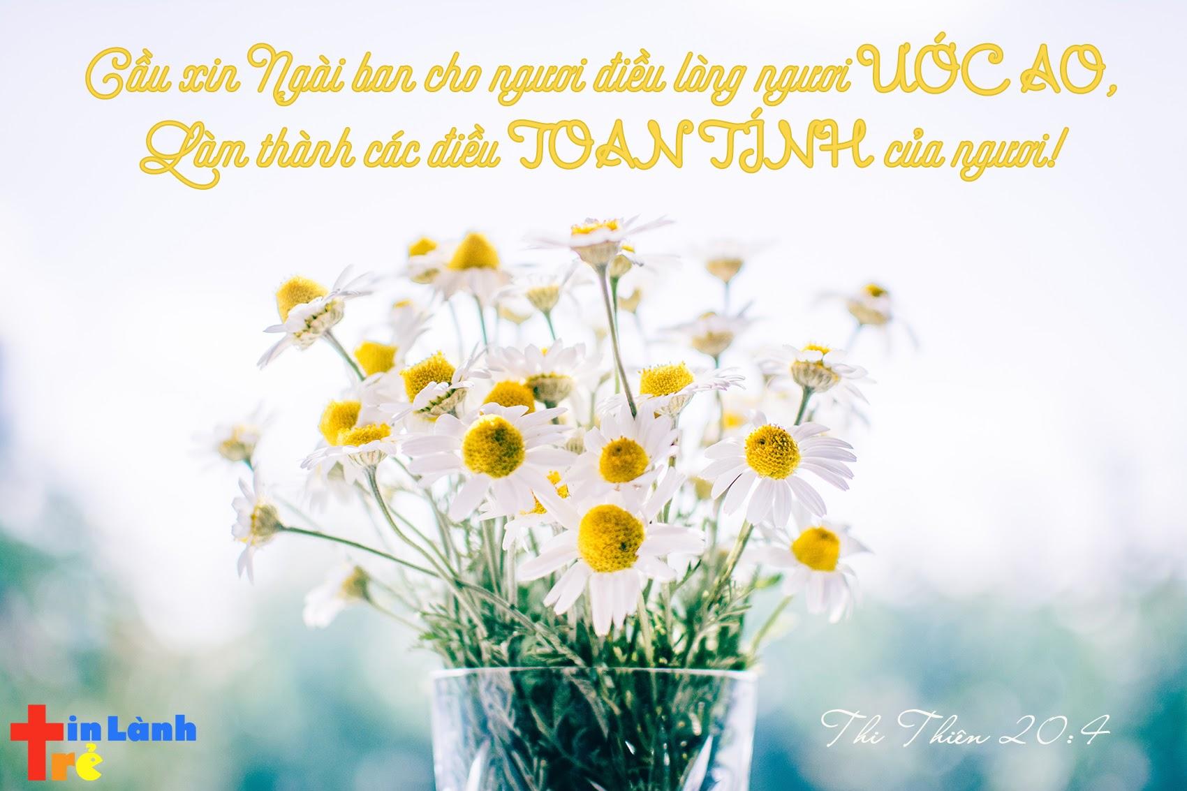 """""""Cầu xin Ngài ban cho ngươi điều lòng ngươi ước ao, Làm thành các điều toan tính của ngươi"""" -Thi-thiên 20:4"""