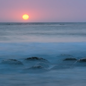 Bowling Ball Beach Sunset by Mary Lane Anderson - Landscapes Waterscapes ( sunset, california, bowling ball beach, ocean, rocks )