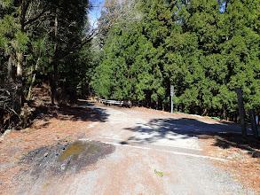 林道分岐(左へ)