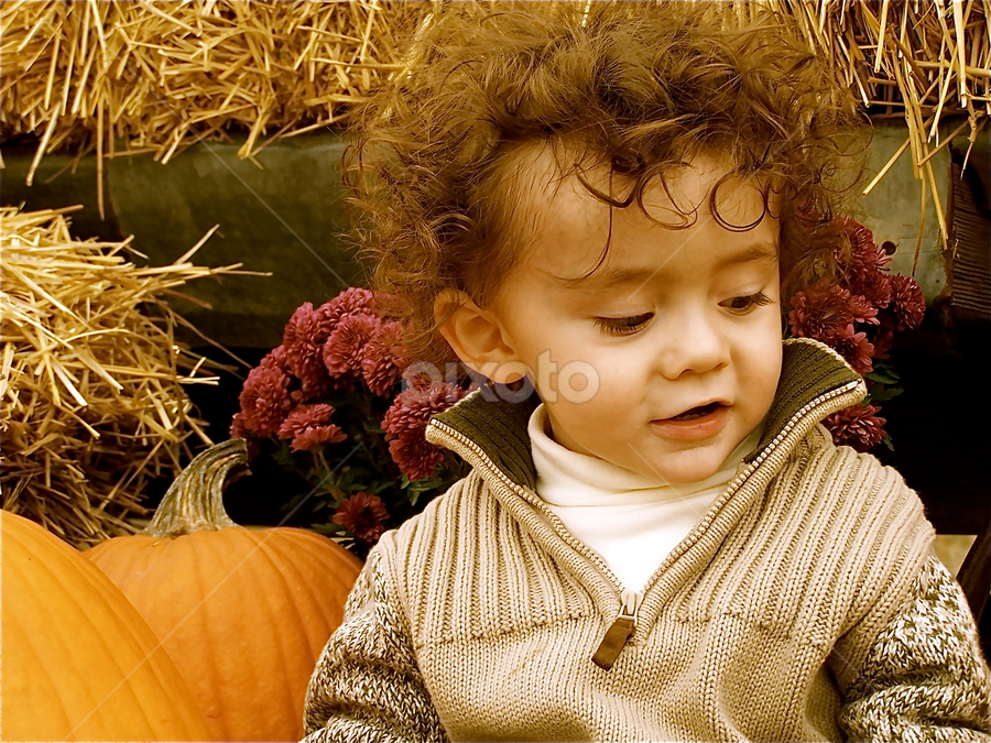 by Lori Lei Herr - Babies & Children Toddlers ( farm, child, autumn, pumpkin, fall, children, toddler, boy )