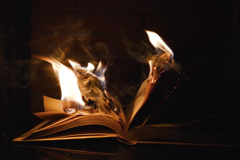 Fahrenheit 451 di Justinawind