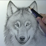 How to draw wolves APK icon