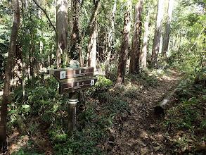 ここから徳願寺ハイキングコース