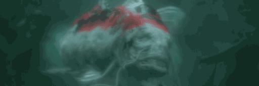 ぬしの色鯉