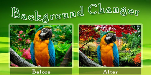 Background Changer