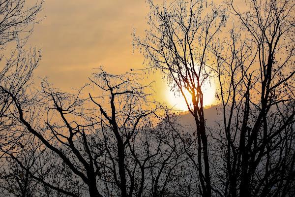 The sunrise di ScrofaniRosaria