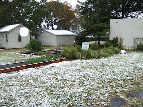 Photo: Garden snow- by Vance