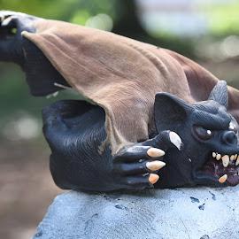 by Lorraine D.  Heaney - Public Holidays Halloween