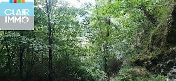 terrain à Saint-Paul-sur-Isère (73)