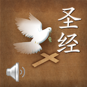 Chinese Bible-Human voice
