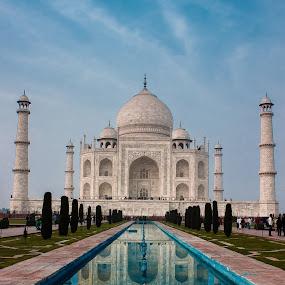 Taj Mahal | India by Shashank Ramesh - Buildings & Architecture Statues & Monuments ( pwcarcreflections, monuments, marble, reflection, ancient, taj mahal, monument, india, architecture )