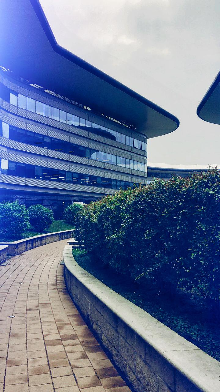 Morning campus  di Francesco0811