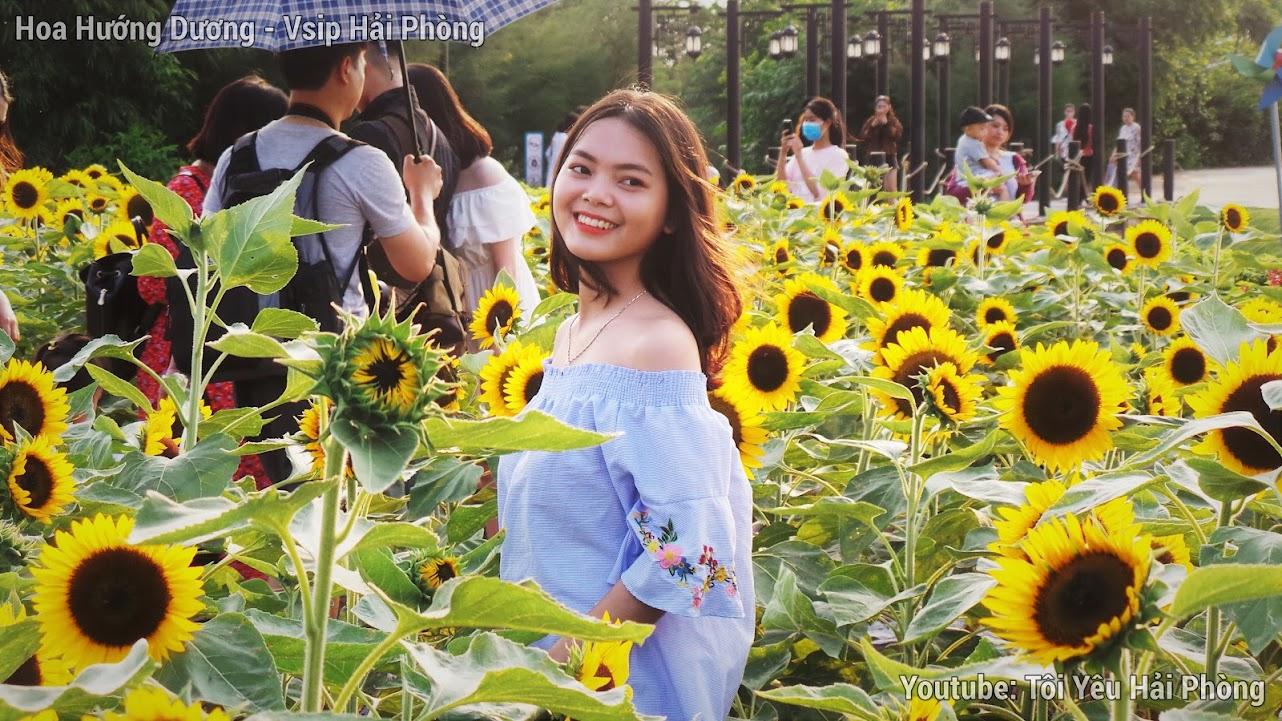 Vườn hoa Hướng Dương - Central Park Vsip Hải Phòng 3