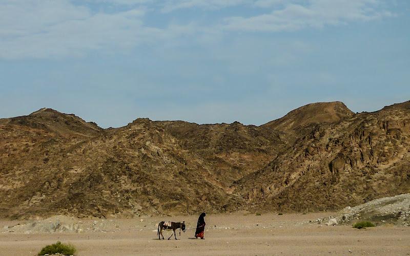 io...sola nel deserto di laura70